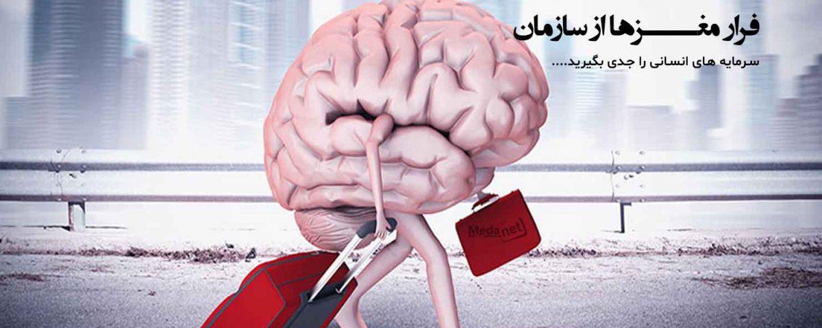 فرار مغزها از سازمان!